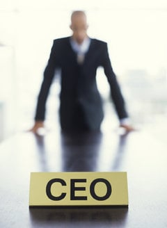 CEO performance measures